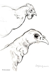Bird Heads